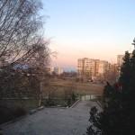 Garden-Before-3